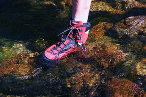 Mt.Expert GTX is Gortex-lined, but split-leather exterior uppers are almost impervious to water as seen submereged in Rock Creek, CA.