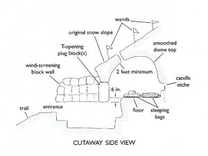 Cutaway side view of a finished snow cave. Illustration by The Mountaineers Books.