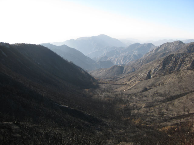 The California Station Fire destroyed many acres of the Angeles National Forest.