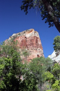Angels Landing is a short but strenuous hike in Zion National Park.