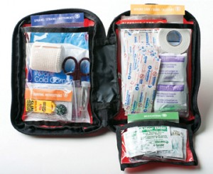 Adventure Medical Kit's AFA 2.0 is perfect for a group of up to four people and features antiseptic, wipes, bandages and more.