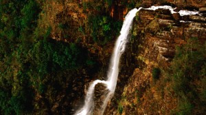 The Mountain Pine Ridge reserve is one of the best destinations. The reserve's Hidden Valley falls are considered one of the best in the world with a height of 1500 feet.
