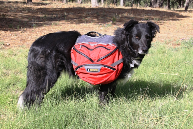 Ruffwear Palisade Dog Pack