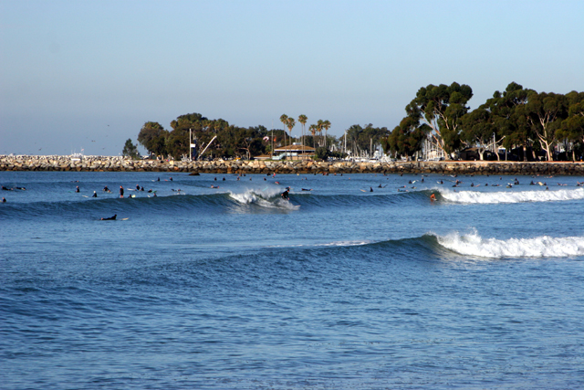 doheny state beach surfers