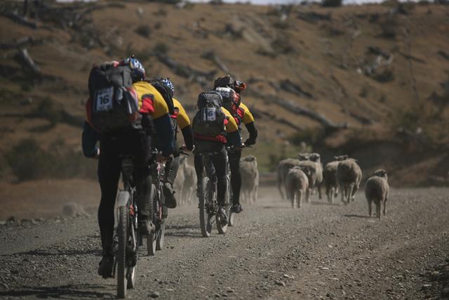 Team Calleva on bikes to the next stage