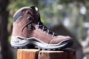 LOWA Renegade LL's are mid-high light hikers.